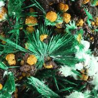 Malachite Agardite & Arseniosiderite