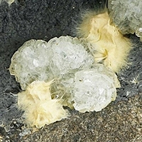 Clinoptilolite-Ca & Mordenite