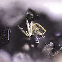 Wöhlerite Titanite & Pyroxene Group