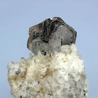 Biotite & Pyroxene Group