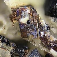 Lileyite & Magnetite