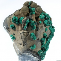 Reichenbachite & Pseudomalachite