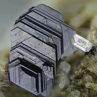 Biotite & Nosean