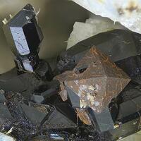 Magnetite & Augite