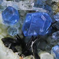 Haüyne Apatite & Pyroxene Group