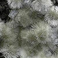 Mesolite Thomsonite & Phillipsite