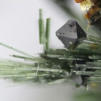 Magnetite & Actinolite