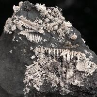 Native Silver On Native Arsenic