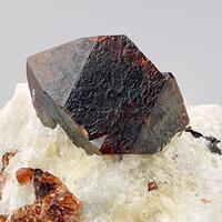 Wittig Minerals: 23 Jun - 30 Jun 2017