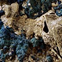Pyrrhotite With Chalcopyrite On Dolomite
