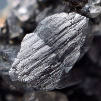 Whewellite With Calcite