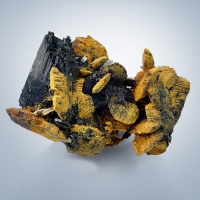 Limonite Psm Siderite & Beryl On Schorl