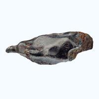 Iron Meteorite Var Kamacite