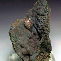 Manganoan Adamite