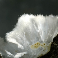 Mesolite On Analcime