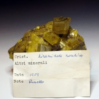 Your Mineral Collection: 25 Sep - 02 Oct 2020
