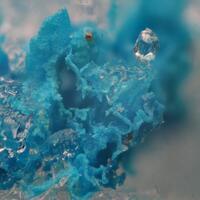 Mex's Rare Minerals: 24 Nov - 30 Nov 2015