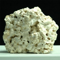 Aragonite Var Cave Pearls