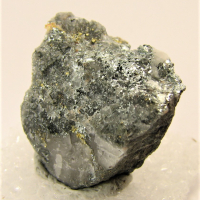 Altaite & Gold