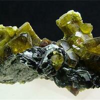 Vesuvianite With Clinochlore