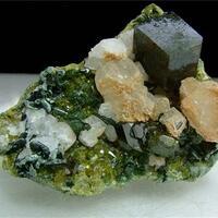 Andradite With Diopside Epidote Calcite & Clinochlore