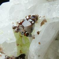 Anatase With Titanite Albite & Quartz