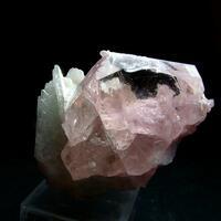 Beryl Var Morganite With Cleavelandite & Lepidolite