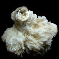 Cassiterite With Apatite