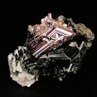 Rutile Var Sagenite With Actinolite