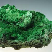 Conichalcite & Brochantite