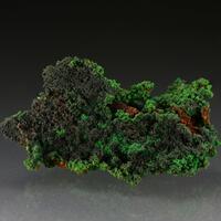 Conichalcite With Cuprite