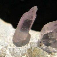 Amethyst Reverse Sceptre