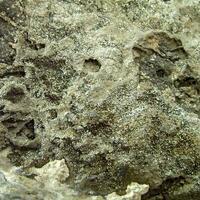 Löllingite With Native Arsenic
