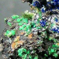 Ludjibaite Olivenite Azurite & Malachite