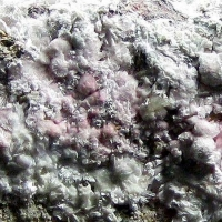 Picropharmacolite & Erythrite