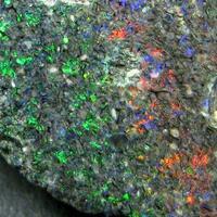 Opal Var Black Opal