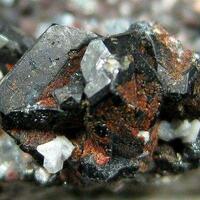 Yazganite Tridymite & Cassiterite On Hematite