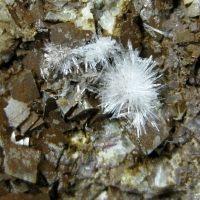 Aragonite On Siderite