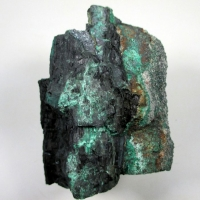 Chalcocite Psm Fossil Wood