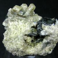 Fassaite With Biotite