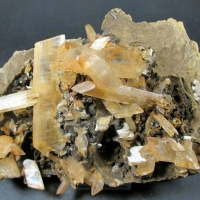 Gypsum Var Selenite On Siderite