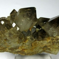 Gold In Smoky Quartz
