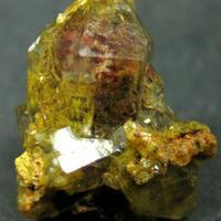 Quartz Var Eisenkiesel Psm Fossil Fungi Mycelium
