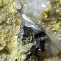 Tetrahedrite & Quartz