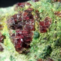 Pyrope Forsterite & Chromian Diopside