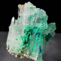 Ammineite & Eugsterite On Halite