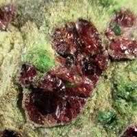 Pyrope & Chromian Diopside