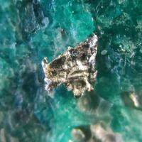 Native Silver On Chrysocolla