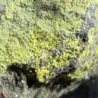 Voglite & Uraninite