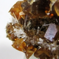 Natrolite On Calcite On Fossil Wood